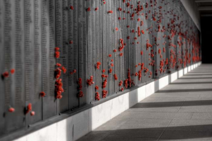 Rememberance Events to be Held this Weekend at the Hove Memorial Hall and in Old Steine Amongst Others.