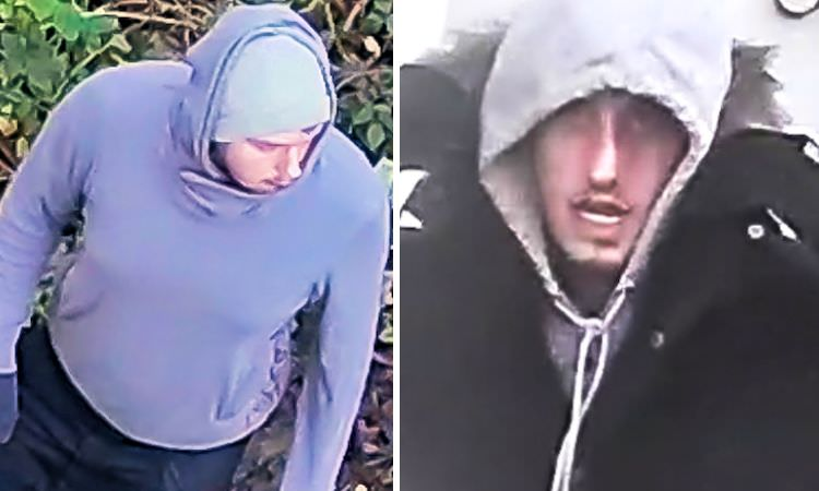 Pictured: The two suspects who were caught in the act on CCTV
