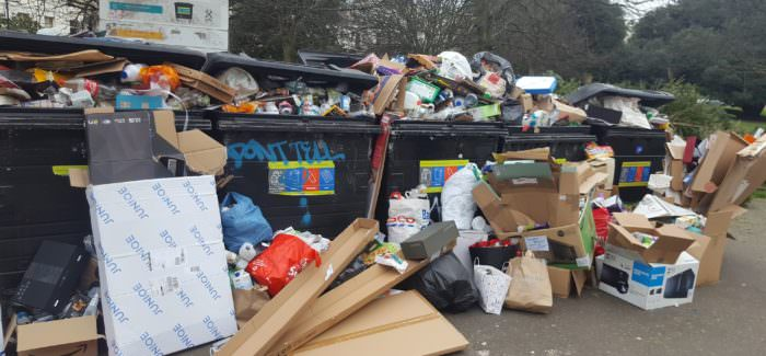 """Greens say """"time to bin Labour"""" after mounting waste collection worries"""