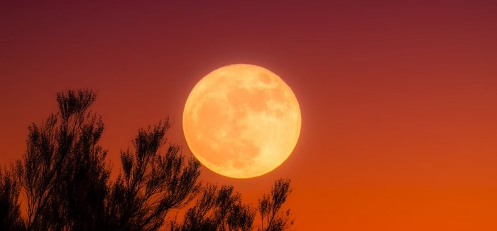 A full Harvest Moon is appearing tonight, Friday the 13th